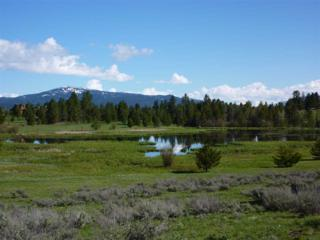 Lot 7 Buckcamp Lane, Mccall, ID 83638 (MLS #98656712) :: Boise River Realty