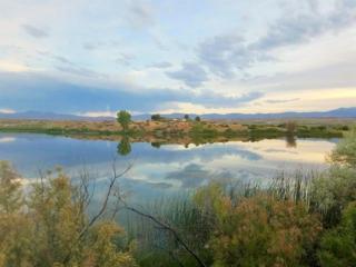 20735 Oreana Loop Rd, Oreana, ID 83650 (MLS #98624634) :: Boise River Realty