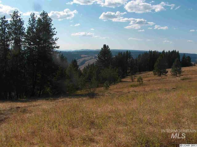 Lot 45 Phase 3 Twin River Ranch Sub-Div, White Bird, ID 83554 (MLS #318607) :: New View Team