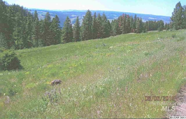 Lot 43 Phase 3 Twin River Ranch Sub Div, White Bird, ID 83554 (MLS #318617) :: New View Team