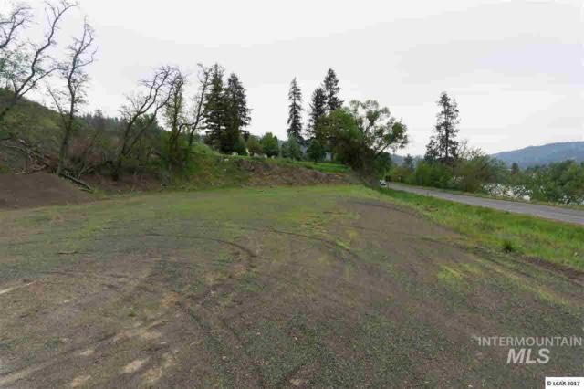 lot 1 River View Estates, Kamiah, ID 83536 (MLS #319106) :: Haith Real Estate Team