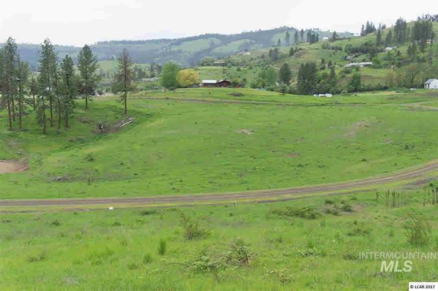 lot 10 River View Estates, Kamiah, ID 83536 (MLS #319112) :: Haith Real Estate Team
