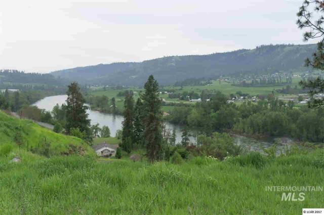 lot 11 River View Estates, Kamiah, ID 83536 (MLS #319113) :: Haith Real Estate Team