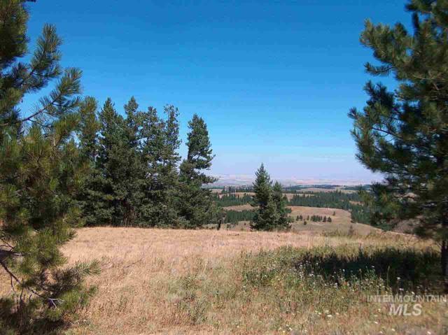 Lot 93 Pilgrims Ridge, White Bird, ID 83554 (MLS #319582) :: New View Team
