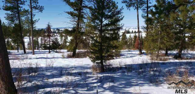 00 W Old White Bird Hill Rd, Grangeville, ID 83530 (MLS #322183) :: Jon Gosche Real Estate, LLC