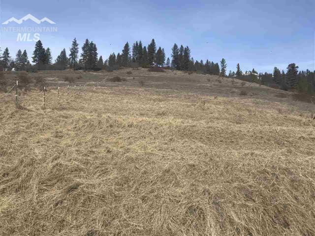 TBD Old Peck Grade, Lenore, ID 83541 (MLS #322189) :: Epic Realty