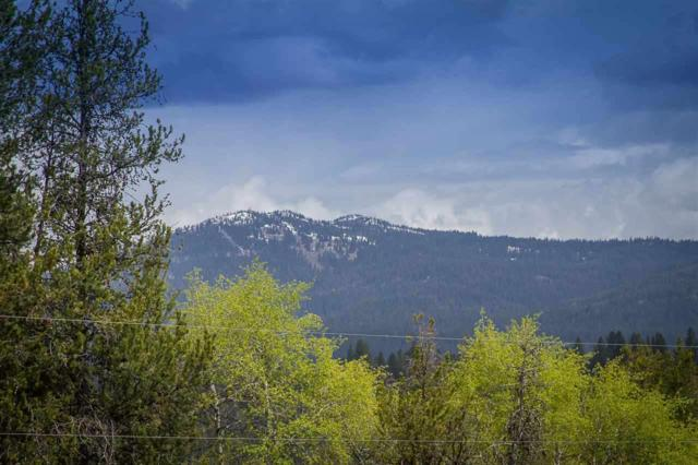 38 Tranquility Lane, Mccall, ID 83638 (MLS #98587507) :: Juniper Realty Group