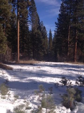 Lot 8 Upper Fitch's Point Road, Garden Valley, ID 83622 (MLS #98590502) :: Boise River Realty