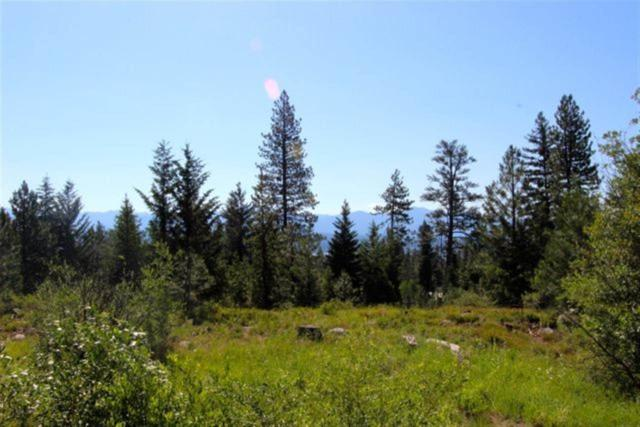 1624 Lakeridge Drive, Mccall, ID 83638 (MLS #98595724) :: Jon Gosche Real Estate, LLC
