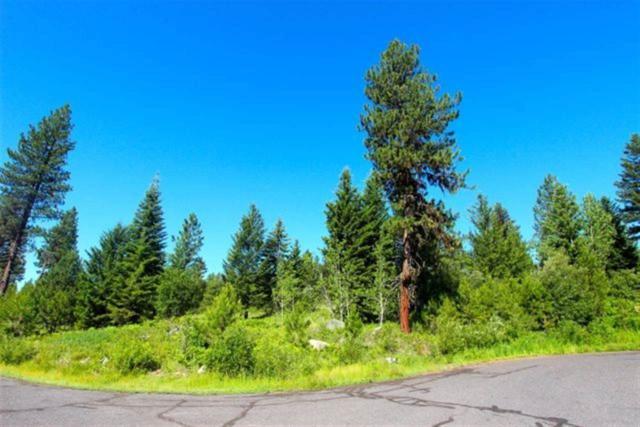 1647 Lakeridge Drive, Mccall, ID 83638 (MLS #98595971) :: Zuber Group