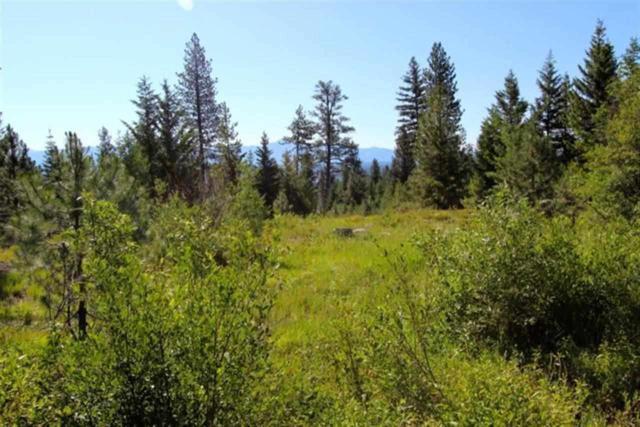 1626 Lakeridge Drive, Mccall, ID 83638 (MLS #98595973) :: Jon Gosche Real Estate, LLC