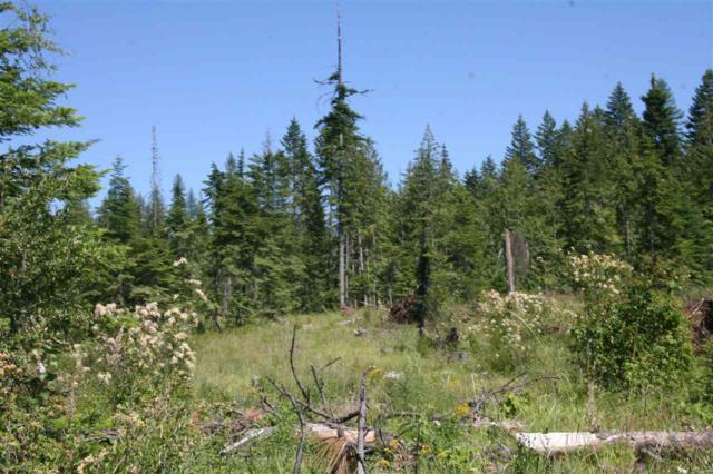 TBD Twin River Ranch, Outside City Limits, ID 83554 (MLS #98630548) :: Jon Gosche Real Estate, LLC