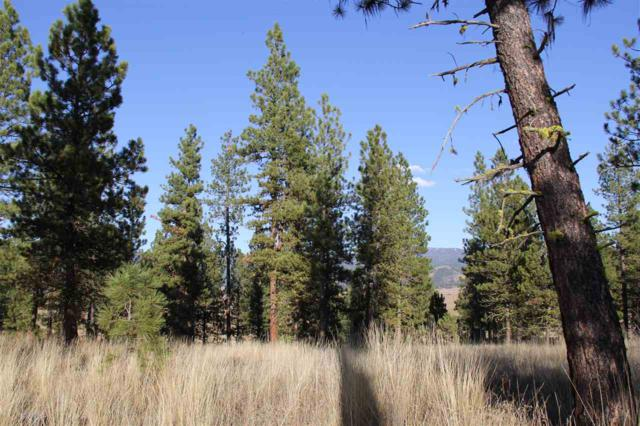 Lot 10 Timber Ridge Drive, New Meadows, ID 83654 (MLS #98631112) :: Zuber Group