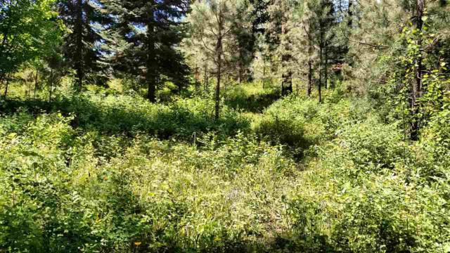 Roundup, Horseshoe Bend, ID 83629 (MLS #98638571) :: Boise River Realty