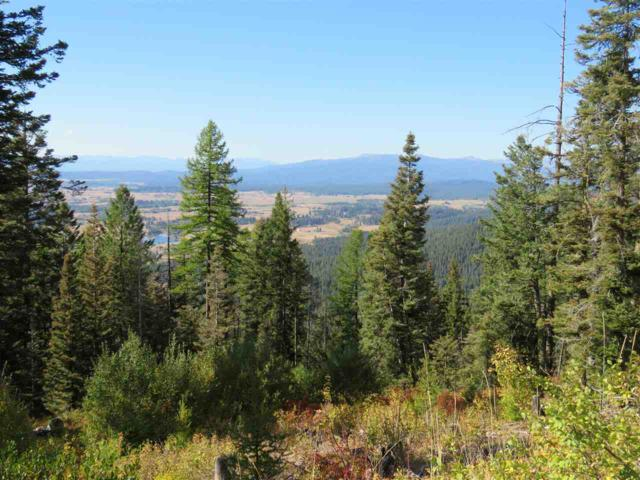 Paddy Flat Rd, Mccall, ID 83638 (MLS #98643086) :: Zuber Group