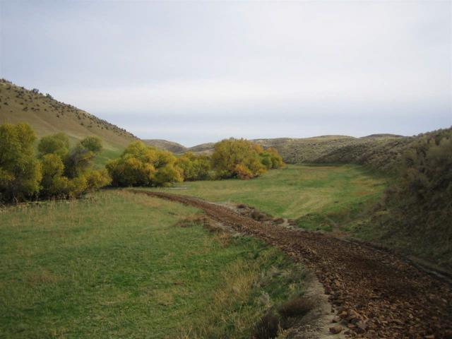 TBD Mann Creek Road, Weiser, ID 83672 (MLS #98647972) :: Boise River Realty