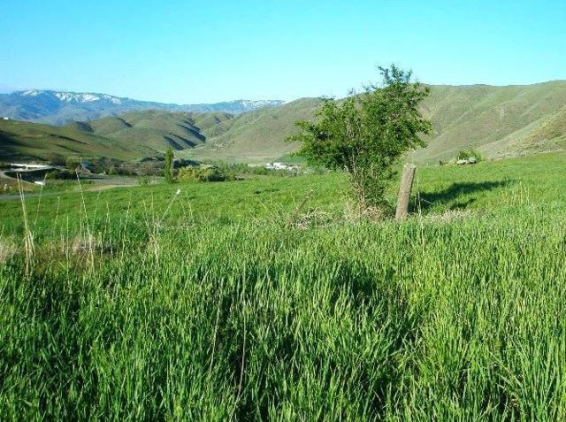 Lot #29 Brookside, Horseshoe Bend, ID 83629 (MLS #98649739) :: Full Sail Real Estate
