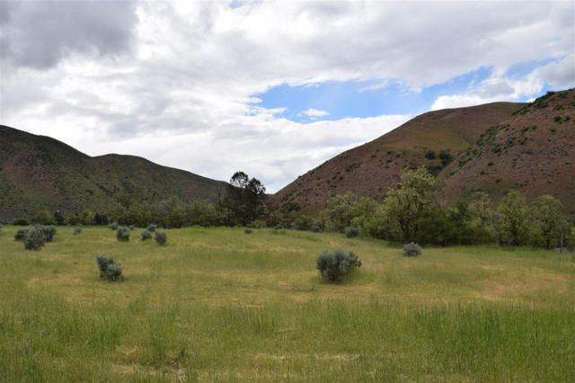 Lot 19 River Terrace, Horseshoe Bend, ID 83629 (MLS #98652904) :: Full Sail Real Estate