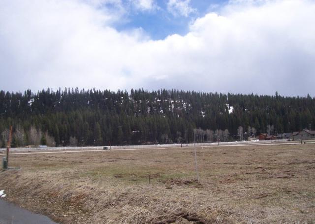 TBD Potts, Mccall, ID 83638 (MLS #98653493) :: Boise River Realty