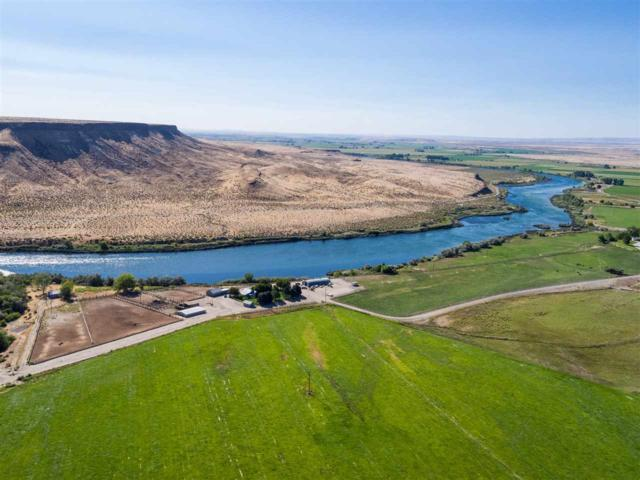 Snake River Farm, Grand View, ID 83624 (MLS #98653765) :: Boise River Realty