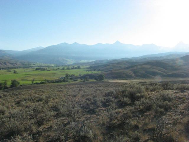 TBD 8 Black Hawk, Salmon, ID 83467 (MLS #98653894) :: Boise River Realty