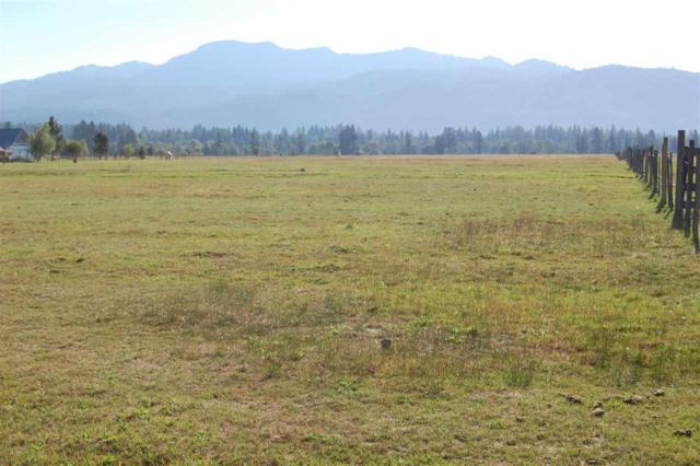 TBD Hwy 55, Mccall, ID 83638 (MLS #98653983) :: Zuber Group