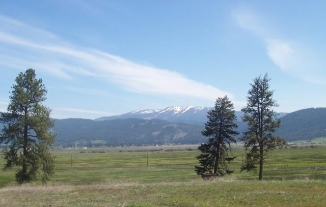 Lot 22 Timber Ridge, New Meadows, ID 83654 (MLS #98656646) :: Team One Group Real Estate