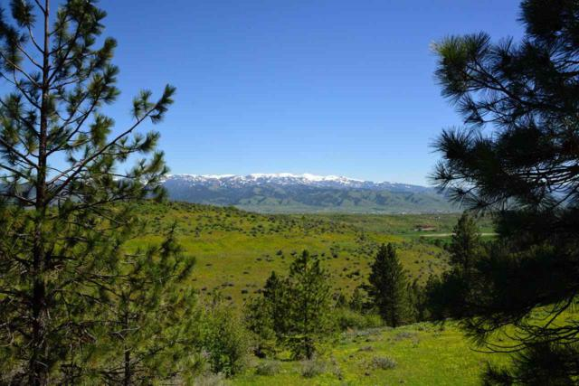 1824 Pole Creek Road, Council, ID 83612 (MLS #98659116) :: Front Porch Properties