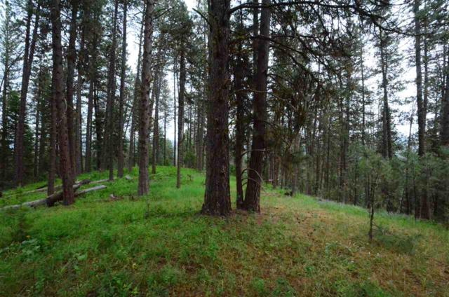 TBD Middle Fork Ridge, Garden Valley, ID 83622 (MLS #98660499) :: Jon Gosche Real Estate, LLC