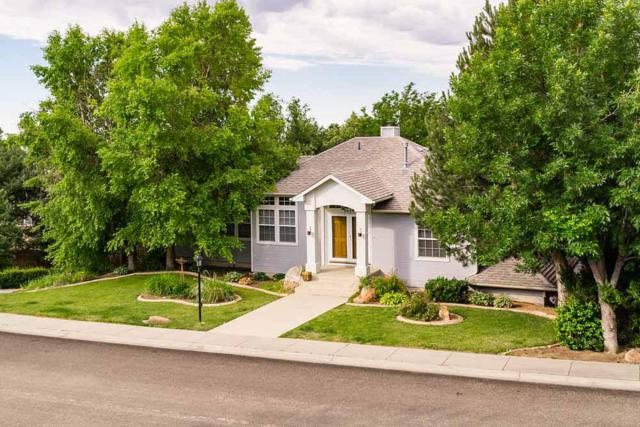 2029 S Ridge Point Way, Boise, ID 83712 (MLS #98660538) :: Boise River Realty