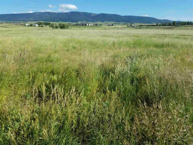 133 Frontier Lane, Grangeville, ID 83530 (MLS #98660623) :: Michael Ryan Real Estate