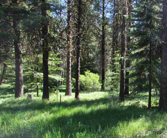 Lot 5 Whispering Pines, Mccall, ID 83638 (MLS #98660883) :: Boise River Realty