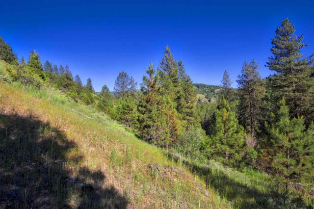 Mckinley Gulch, Idaho City, ID 83631 (MLS #98660917) :: Build Idaho