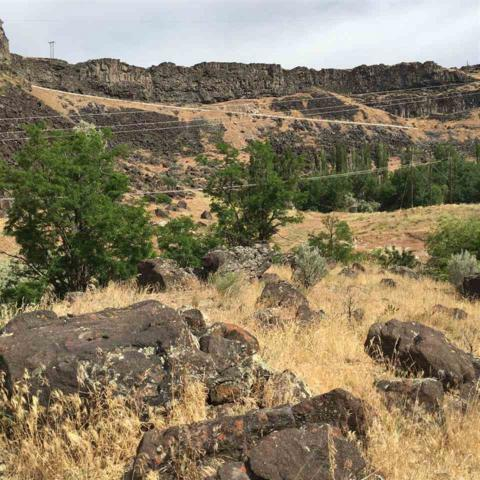 TBD Canyon View, Jerome, ID 83338 (MLS #98661010) :: We Love Boise Real Estate