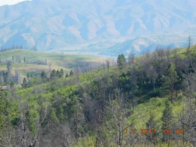 Tax 1 in P-33 Arb Survey Sec 13 T1n R9e, Pine, ID 83647 (MLS #98661788) :: Boise River Realty