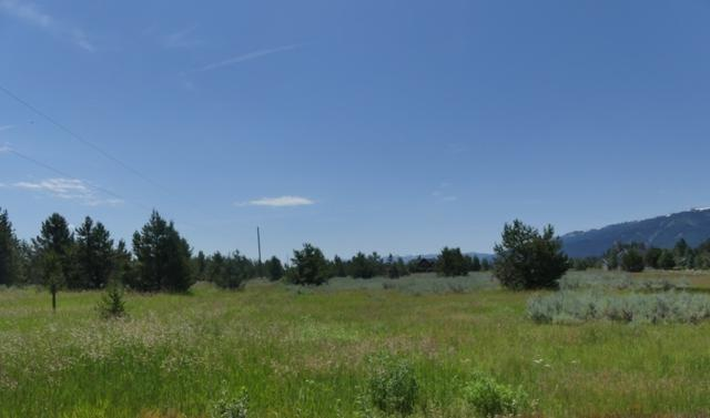 13254 Brookie Drive, Donnelly, ID 83615 (MLS #98661868) :: Jon Gosche Real Estate, LLC