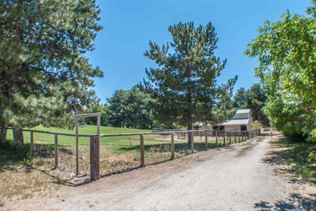 9091 W Deer Lane, Eagle, ID 83616 (MLS #98664395) :: Build Idaho