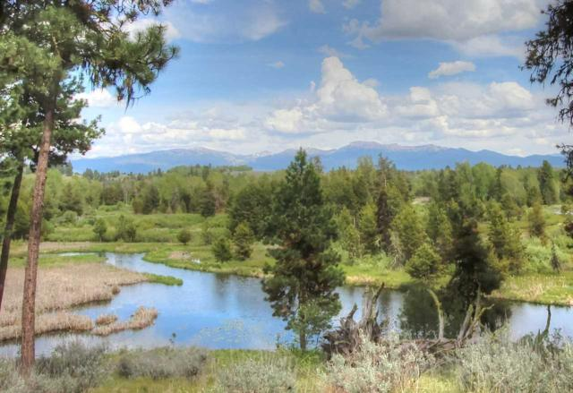 Lot 10 Whitecloud Court, Mccall, ID 83638 (MLS #98664406) :: Build Idaho