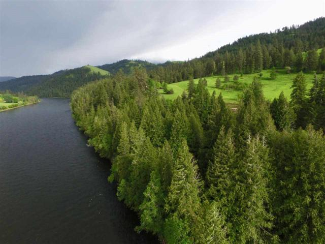 6174 Hw 12, Kooskia, ID 83539 (MLS #98664724) :: Zuber Group
