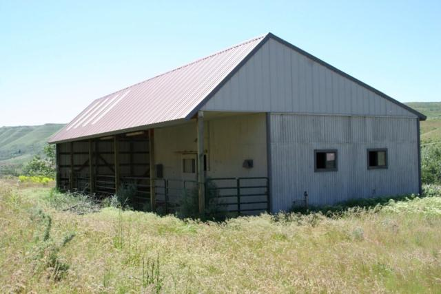 3068 Hwy 71, Cambridge, ID 83610 (MLS #98667200) :: Jon Gosche Real Estate, LLC