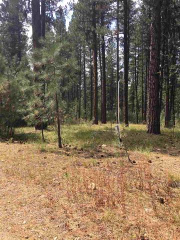 6 Mark Lane, Star Ranch, ID 83631 (MLS #98667706) :: Jon Gosche Real Estate, LLC