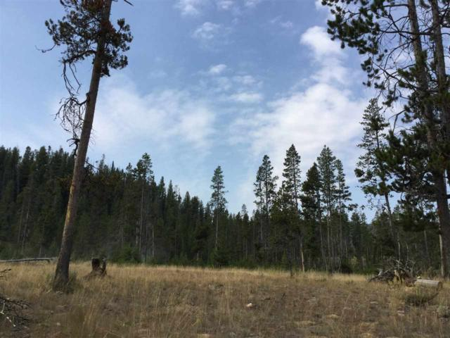 TBD Sawtooth Way, Stanley, ID 83278 (MLS #98668075) :: Jon Gosche Real Estate, LLC