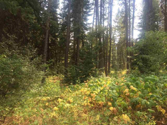 Lot 19 Elk Run, Garden Valley, ID 83622 (MLS #98669033) :: Boise River Realty