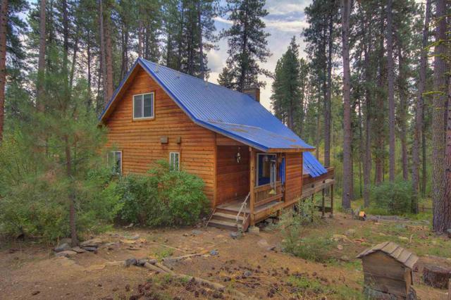 7 Bull Pine Road, Idaho City, ID 83631 (MLS #98669139) :: Build Idaho