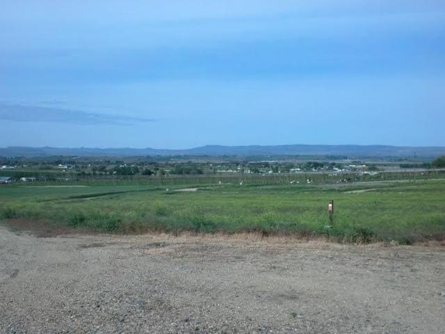 26962 Bird Haven Court, Wilder, ID 83676 (MLS #98669986) :: Synergy Real Estate Services at Idaho Real Estate Associates