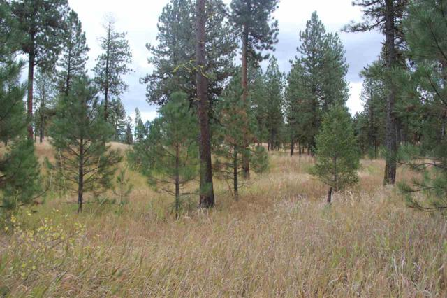 Lot 9 Timber Ridge Drive, New Meadows, ID 83654 (MLS #98671685) :: Team One Group Real Estate