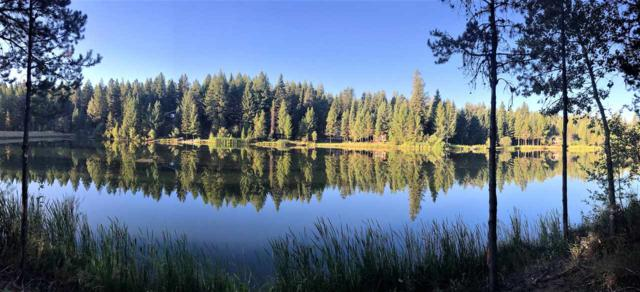 00 Eagle Shores Court, Mccall, ID 83638 (MLS #98672272) :: Boise River Realty