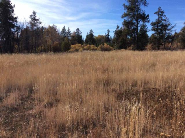 209 West Jug Road, Mccall, ID 83638 (MLS #98673779) :: Boise River Realty