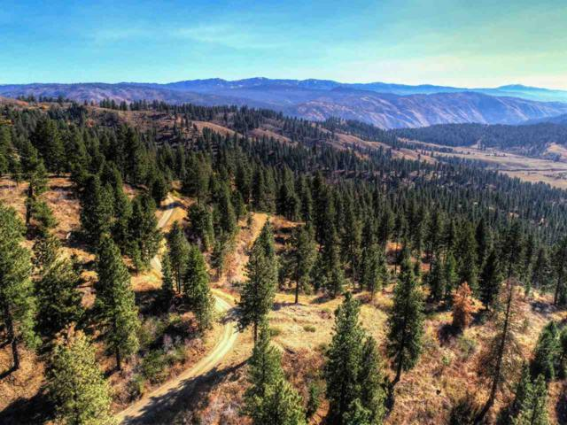 LOT 17 Payette River Ranchettes, Banks, ID 83602 (MLS #98674477) :: Boise River Realty