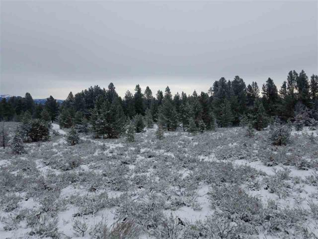 TBD West Mountain Road, Donnelly, ID 83615 (MLS #98677654) :: Jon Gosche Real Estate, LLC
